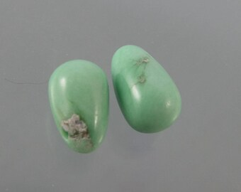 Lucin Variscite Drilled Smooth Drop Bead Matched Pair SALE 33% OFF