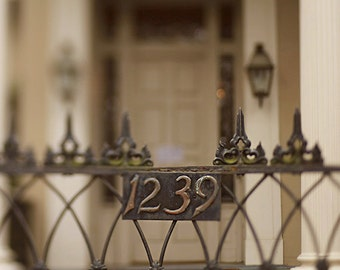 "New Orleans Garden District Gate Photography - ""1239 Gate"" architecture, garden district, home decor wall art, anne rice home"