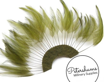 Stripped Hackle Feather Fan for Fascinators & Hat Making - Olive Green
