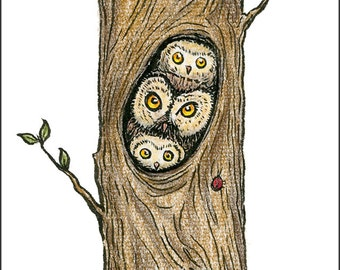 Mama Owl and Owlets, individual Mothers Day card.