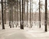Rustic Decor, Rustic Canvas Art, Cabin Decor, Canvas Wall Art, Winter Landscape, Pine Forest, Large Canvas Art