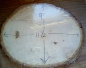large Board for Spirit (Pendulum) Board 9  by 11 1/2 bark to bark