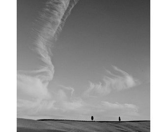 Fine Art Black & White Landscape Photography of Cirrus Clouds and Two Cypress Trees in Tuscany Italy