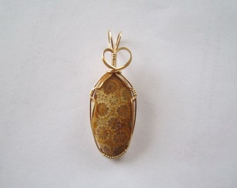 brown Fossil Coral Pendant wire wrapped in 14 k gold filled wire by Barb's Design
