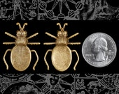 Antiqued Brass Beetle Flat Setting on Back Set of Two AB-P71