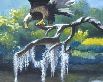 American Bald Eagle wildlife bird painting by RUSTY RUST 36x24 heavy canvas / E-186