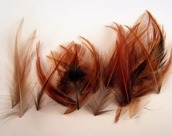 24 Cruelty free Feathers furnace saddle  1 to 3 inches