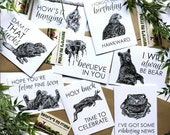 50% OFF for FEB Animal Pun Funny Greeting Card Set Clever Card Funny Birthday Card Hello Funny Animal Feline Holy Buck Beelieve Hawkward