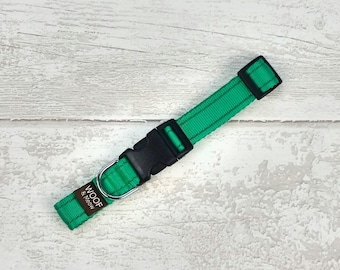 Spring Green Dog Collar