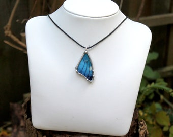 Child's Morpho Butterfly Necklace, Blue Butterfly Jewelry, Nature Jewelry