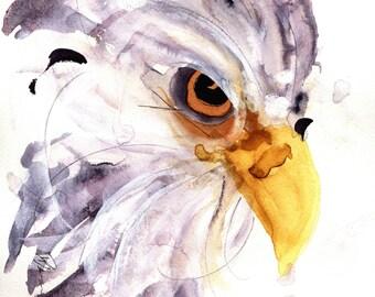 Bald Eagle Art Print, Large Wildlife Art, 8 x 10 Eagle Print