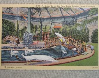 Vintage 1940's The Large Cage, Bird park, Santa Catalina Island, California