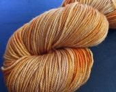 Pumpkin Spice - Frolic Sport Yarn: 100% Superwash Merino, Sport Weight - In Stock