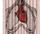 Anatomy Heart Lungs Shower Curtain - Anatomy Heart Shower Curtain - Heart Lungs Anatomy Print - Anatomy Heart, Home Decor