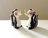Salt and Pepper Shaker Skunks - Skunk Figurines with Clothes Pin Noses - Clothes Pins