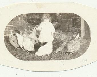 Baby Feeding the Chickens farm snapshot old photo vernacular photograph birds animals RPPC