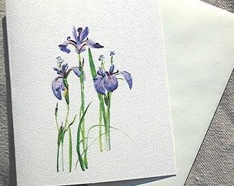 Iris Notecard Wild Blue Flag Blank Invitation