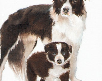 Original Oil Art BORDER COLLIE Portrait Painting Artist Signed Artwork Puppy Sheepdog