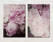 Two Peony Canvas Set, Pink Flower Wall Art, Shabby Chic Home Decor, French Country Art Set, Nature Canvas Set, Floral Home Decoration