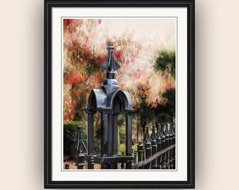 Victorian Gothic Period Wrought Iron Fence Autumn Colors Fall Landscape Fine Art Photography Print