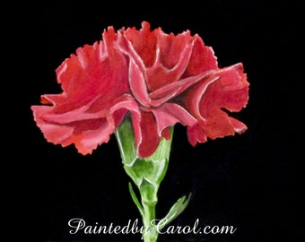 Carnation Print, Red Carnation Painting, Carnation Wall Art, Carnation Giclee Print, Carnation Home Decor, Watercolor Carnation