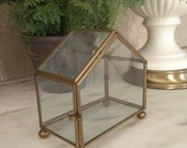 Vintage Glass Box Glass Display Case Glass Terrarium Glass and Brass Box