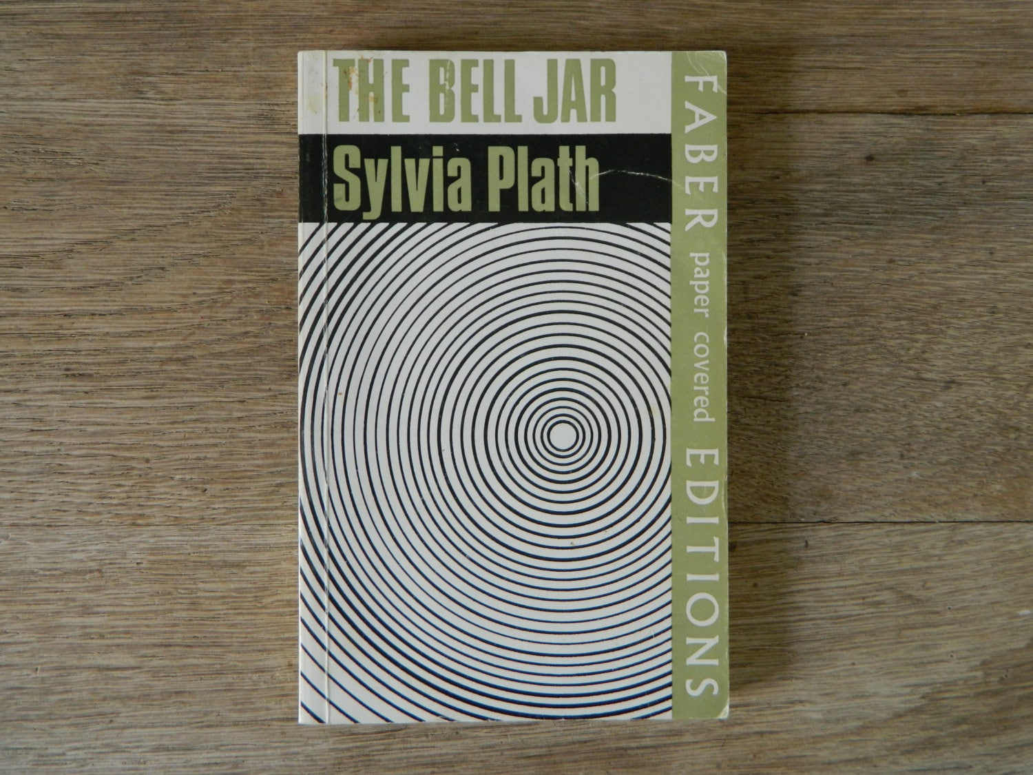 The bell jar essays