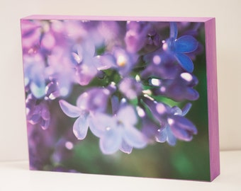 Lilacs Wall Panel - 8x10 Photo Standout, Fine Art Photography, Ready to Hang Wall Decor, Purple Green Violet Home Decor, Flowers, Spring