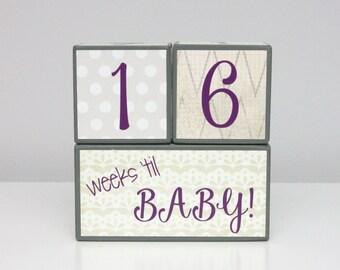 Baby Countdown & Milestone Blocks - Baby Girl - Gray Cream Purple Charcoal Ivory