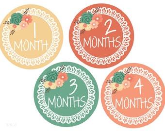 BIG SALE Baby Milestone Stickers Girl Stickers Baby Monthly Stickers Baby Month Stickers Monthly Baby Stickers