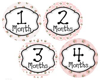 Monthly Baby Girl Stickers, Milestone Stickers, Baby Month Stickers, Monthly Bodysuit Sticker, Monthly Stickers, Roses