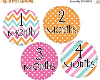 Sale Girl Monthly Stickers Baby Month Stickers Baby Monthly Stickers Orange Pink Milestone Stickers Monthly Baby Stickers