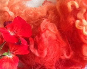 Red Geranium, Cotswold locks, 2.1 oz., Solar dyed,  spin, weave, crafts