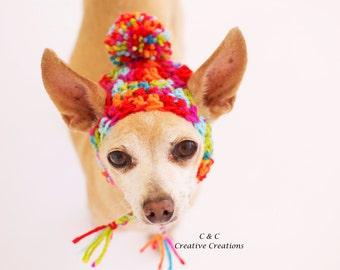 Crazy Funky Dog Hat - Pet Hat - Cat Hat - Dog Beanie - Photo Prop - Hand Crochet - Made to Order