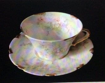 Limoges Haviland cup and saucer hand painted flowers all over