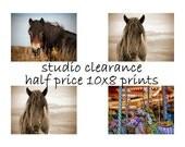 SALE - Horse home decor, equine art, horse photography, girls room art, nursery decor, 10x8 half price