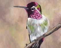 SALE Hummingbird Bird Art Wildlife  SFA  - Original hand painted acrylic bird painting by Australian Artist Janet M Graham