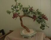 Chinese BONZAI TREE with reddish beads, Celadon Base, Zhongquan Longquan