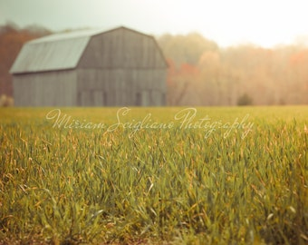 Title: Barn at Dawn, sunrise photography, country decor, rustic wall art, barn photo, fall photography,fine art photograph, fields, sunflare