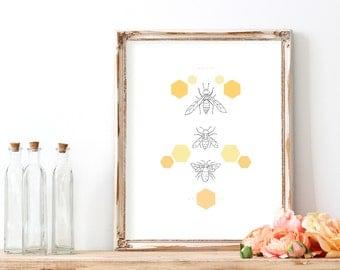 The Bee Hive Print