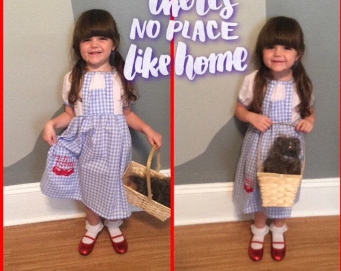 Wizard of OZ/Dorothy Costume Dress, 1T to 8