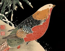 Red Parrot on Oak Branch Ito Jakuchu FINE ART PRINT, Japanese birds art prints, art posters, paintings, woodblock prints reproductions