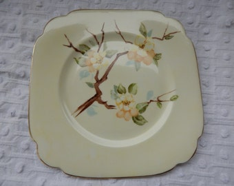 hand painted Clarence China 8 inch Plate