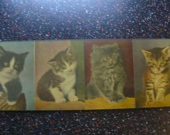 SALE! Vintage Kittens Photographs in Frame