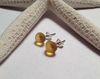 Yellow sea glass stud earrings