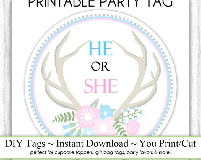 Instant Download - Gender Reveal Party, He or She Antlers, Blue Pink Printable Party Tag, Cupcake Topper, DIY, You Print, You Cut