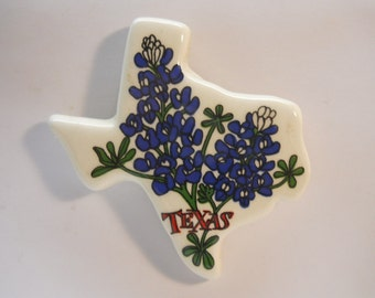 Texas State Magnet Collectible Refrigerator Magnets