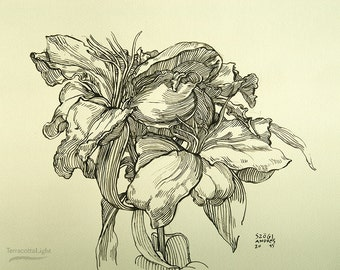 "Flowers - Original Handmade Ink Drawing, Black ink on Paper, Size: 13"" x 10"" (32x25cm)"