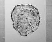 Glacier Park, National Park, Real tree stump art, Montana art print, Mantana wall art, Tree ring art print, Textured Art, Natural patterns