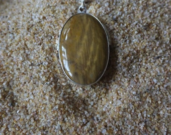 Fossilized Wood and Sterling Silver Pendant with Sterling Chain